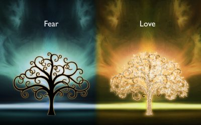 Everything in Life Comes from Love or Fear