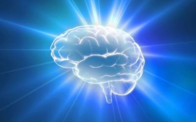 Brain Booster Day 2 – Nurturing the brain
