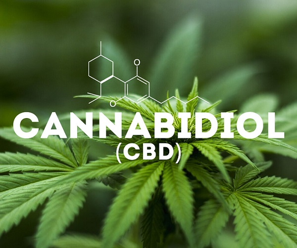 CBD: hip or hype?