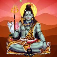2021 Shiva Fest